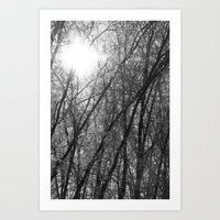 Michigan Winter - Whiteout 2 Art Print