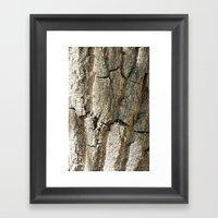 Bark1 Framed Art Print