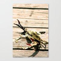 CrabWalk Canvas Print