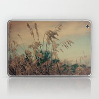 Winter Field Laptop & iPad Skin