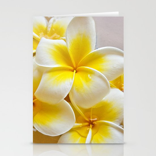 Plumeria Blossoms Stationery Card