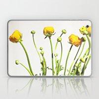 Golden Yellow Ranunculus Flowers on White Laptop & iPad Skin