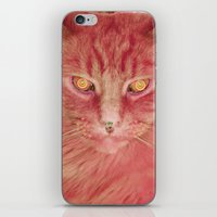 Pink Cat iPhone & iPod Skin