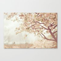 Cherry Tree Garden Canvas Print