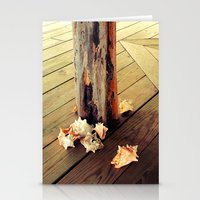 Belizean Shells Stationery Cards