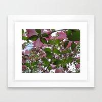 Pink Dreams Framed Art Print