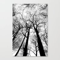 As Darkness Falls Canvas Print