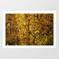 Inside A Golden Aspen Fo… Art Print