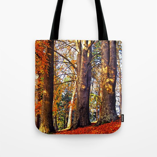 Autumn troika Tote Bag