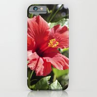iPhone & iPod Case featuring Hibiscus V by TS Photography