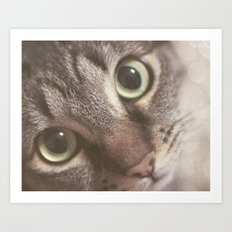 Kitty magic Art Print