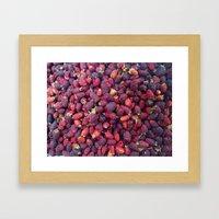Berries in Paloquemao - Bayas en Paloquemao Framed Art Print