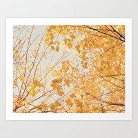 Autumn Orange Art Print