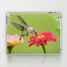 Hummingbird VII Laptop & iPad Skin