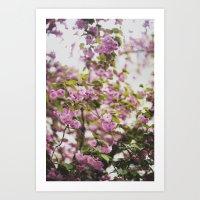 Spring Bloom Art Print