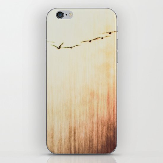Flying home iPhone & iPod Skin