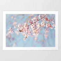 Spring Has Sprung Art Print