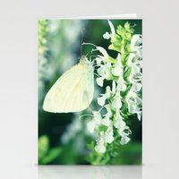 White Cabbage Butterfly On A Flower, Pieris rapae Stationery Cards