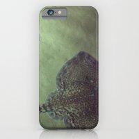 Stingray iPhone 6 Slim Case