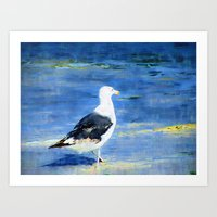 Seagull On Beach Art Print