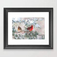 Remembering.... (Northern Cardinals) Framed Art Print