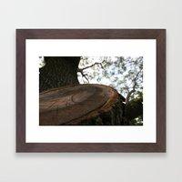 Nature Cracked Framed Art Print
