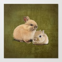 Portrait Of Two Small Bu… Canvas Print