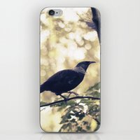 Take off iPhone & iPod Skin
