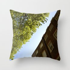 It looked like this Throw Pillow