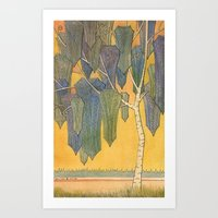 Birch 3 Art Print