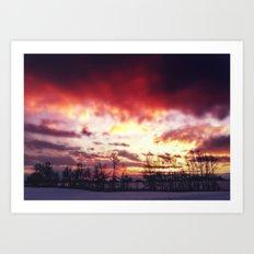 Arctic Warmpth Art Print
