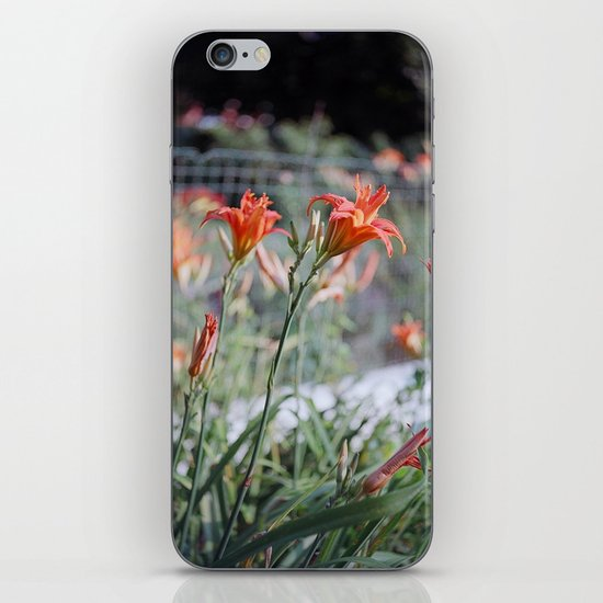 Day Lilies iPhone & iPod Skin