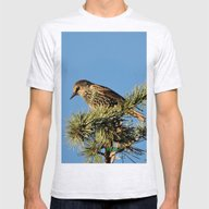 O My Starling, Clementin… Mens Fitted Tee Ash Grey SMALL