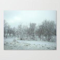 beautiful ice Canvas Print