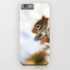 Hunting for Food  iPhone 6 Slim Case