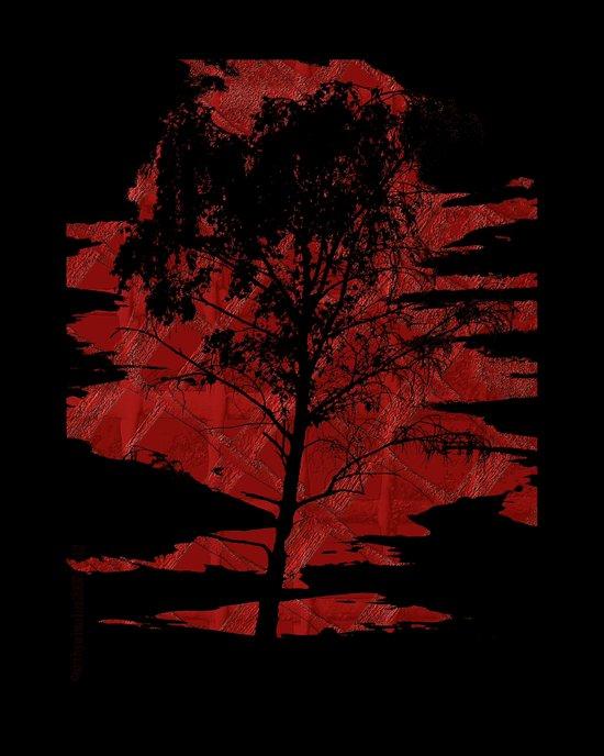 Sunset Birchtree Art Print