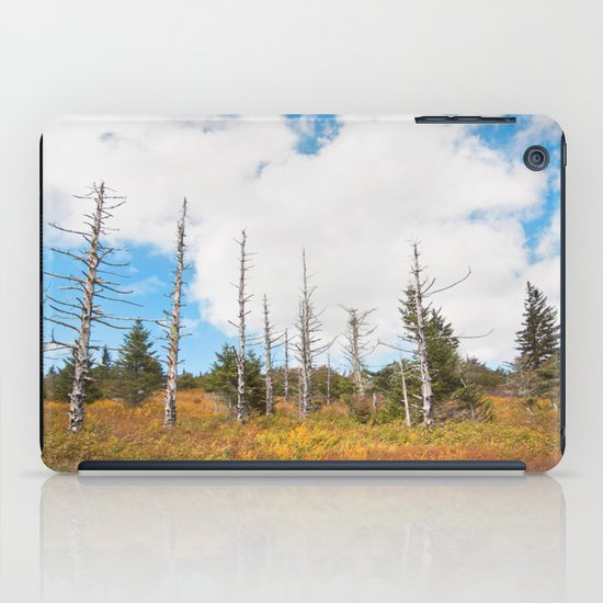 Trees in Mt. Rogers, Virginia iPad Case