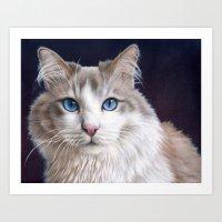 Hiro The Cat Art Print