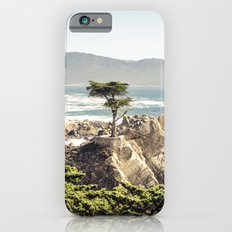 The Lone Cypress Slim Case iPhone 6s