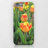 iPhone & iPod Case featuring First Sign Of Spring by Rebekah Carney