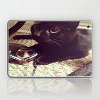 A Kitten's Curiosity Laptop & iPad Skin