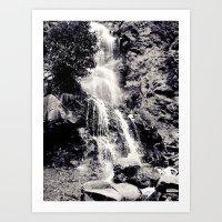Waterfall 3, Colorado Art Print