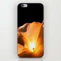 aurea iPhone & iPod Skin