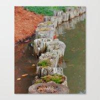 Stumps Canvas Print