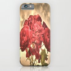 Stormy Sky Roses iPhone 6 Slim Case