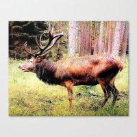Mighty Deer Canvas Print