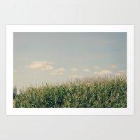 Campos de maíz Art Print