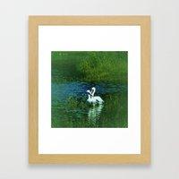 White Pelican Love Framed Art Print