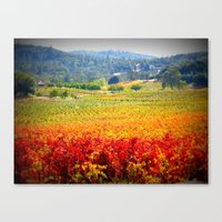 autumn vineyard Canvas Print