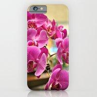 Orchids in Singapore iPhone 6 Slim Case